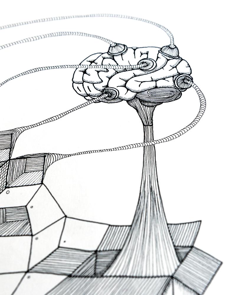 hersenen-pentekening-detail2