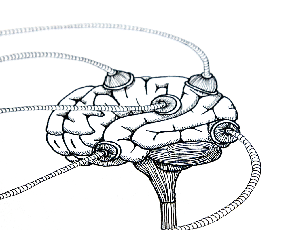 hersenen-pentekening-detail3